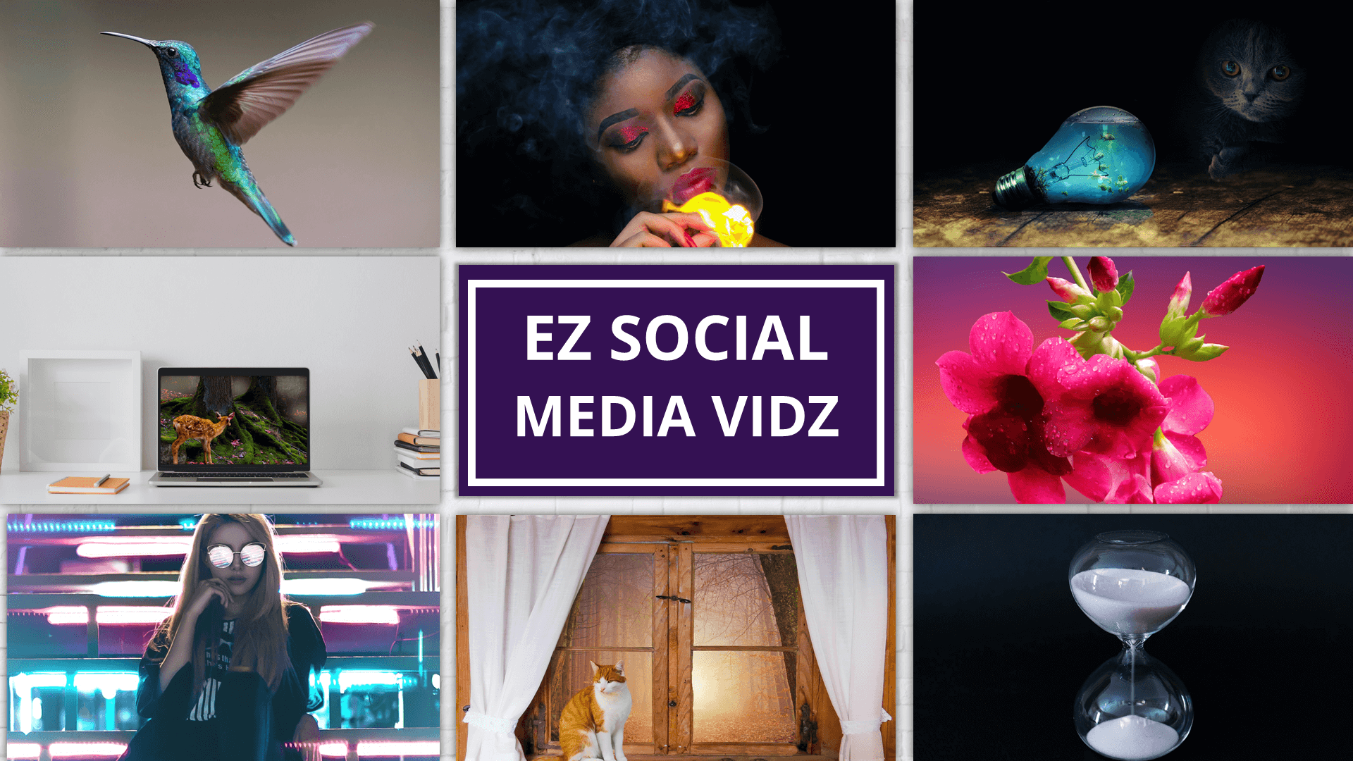 EZ_SocialMedia_Vids_Display7